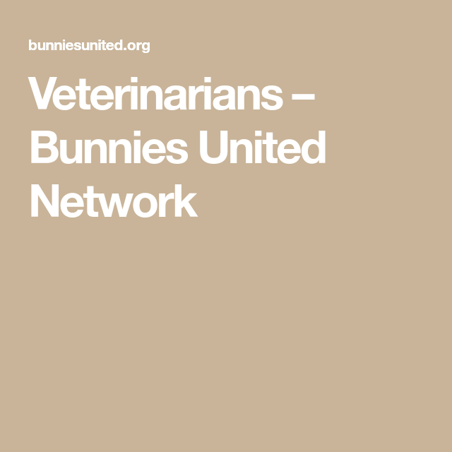 Veterinarians Bunnies United Network Veterinarian Pet Clinic