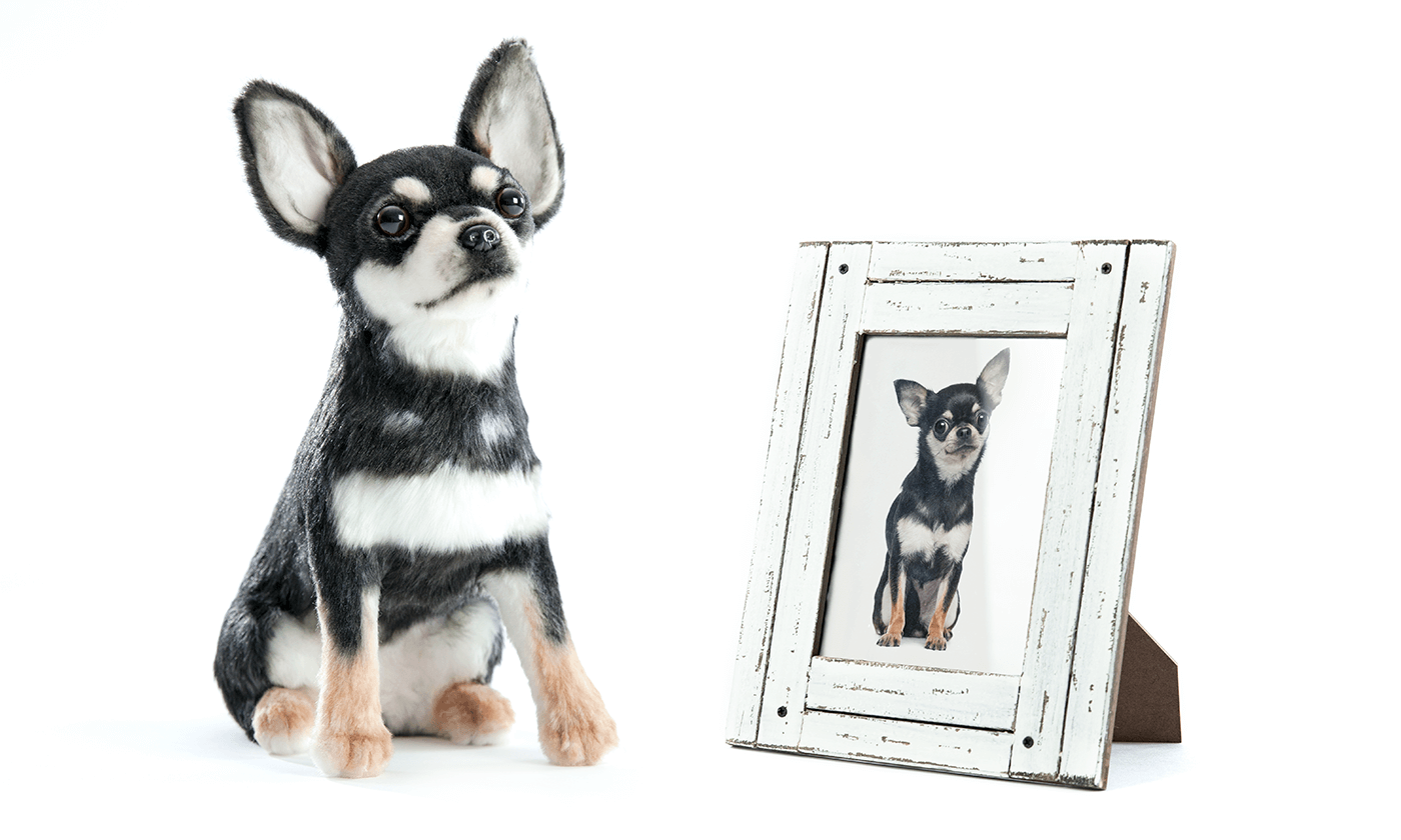 Custom Stuffed Animal of Your Pet Plush Dogs & Cats