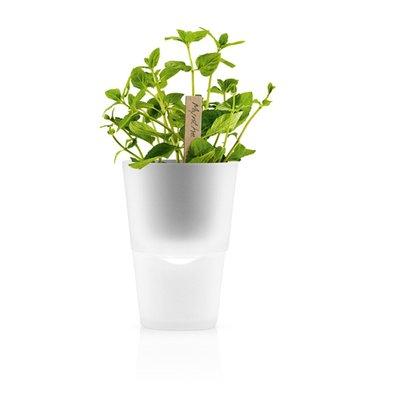 Eva Solo North America Self-Watering Composite Pot Planter |…