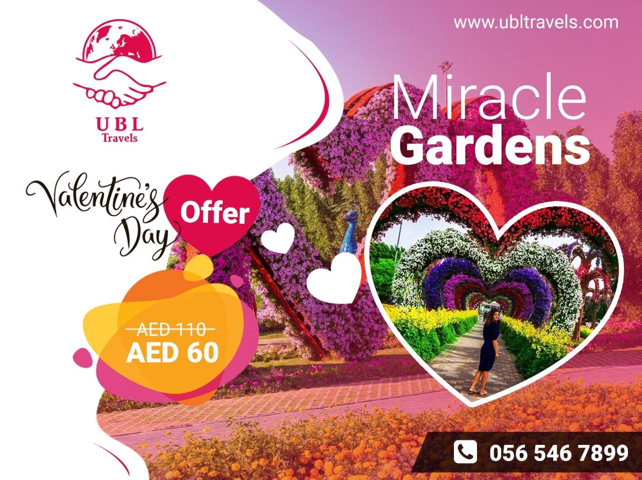 Miracle Garden in 2020 Miracle garden, Dubai tourism