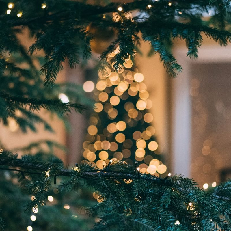 See The Lights Turn On At The Fords Business Community Holiday Tree Lighting This Saturday Wallpaper Iphone Christmas Xmas Wallpaper Christmas Phone Wallpaper