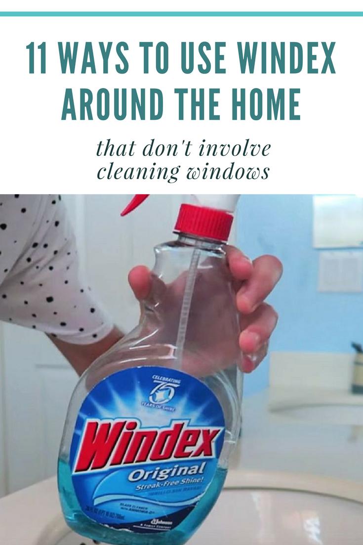 Does Windex Kill Ants