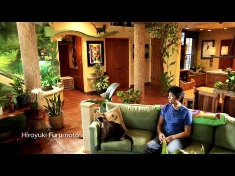 Designer transforma a sua casa num verdadeiro paraíso para gatos - YouTube. Um Súper vídeo adicionado no canal do YouTube: https://www.youtube.com/playlist?list=PLZX84jF6hNf6zdUgxgc3UIPQe9yr1Qgc-