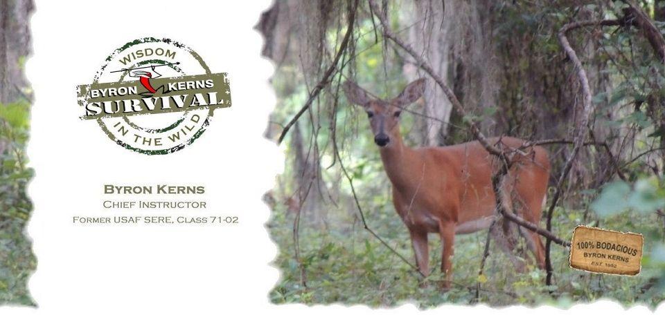 Florida Wilderness Survival School I 3 Florida Pinterest
