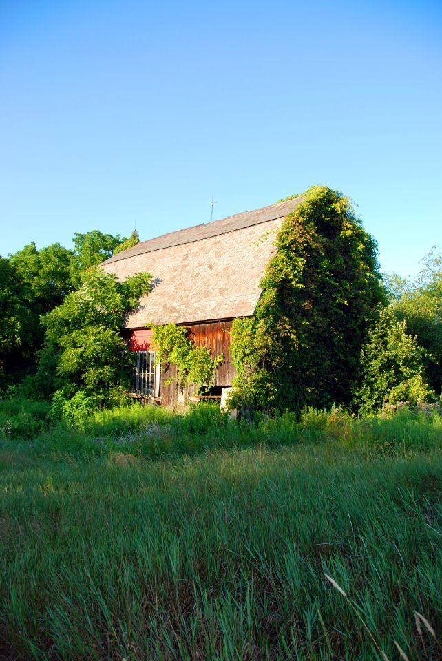 Barn, near Valley City, Ohio  (Photo taken by me ) | Barns