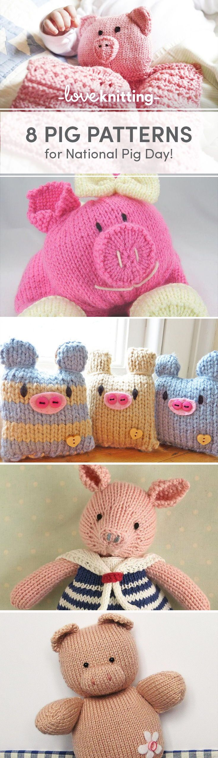 6 piggy projects you\'ll love for National Pig Day | Pinterest ...