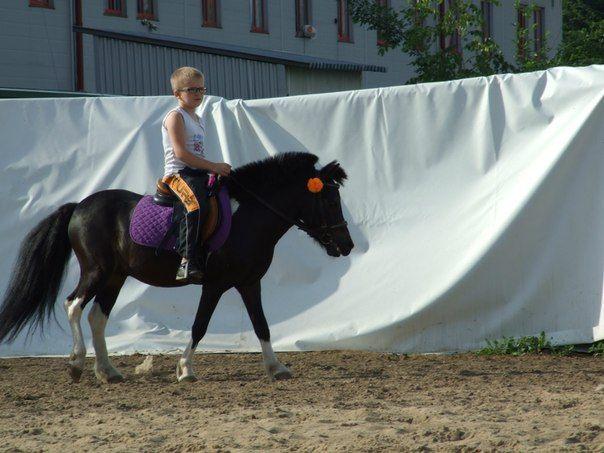 Цена в конный клуб москвы ночные клубы нижнего города