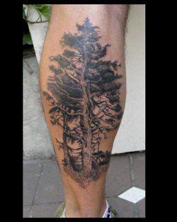 Redwood Tree Tattoo Tumblr In 2020 Tree Tattoo Calf Tree Tattoo Men Tattoos For Guys