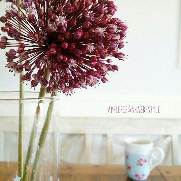 Summer breakfast  (fiori di cipolla sevatica)
