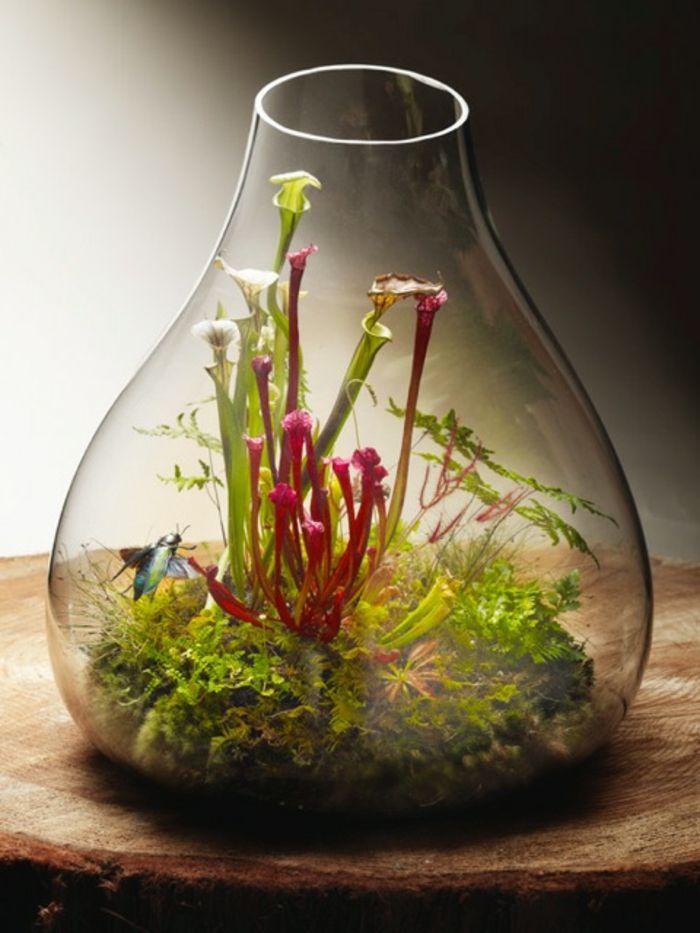 Sukkulenten In Korkstopsel Anlegen Eine Tolle Deko Idee , über 40 Vorschläge Wie Sie Ein Terrarium Selber Bauen
