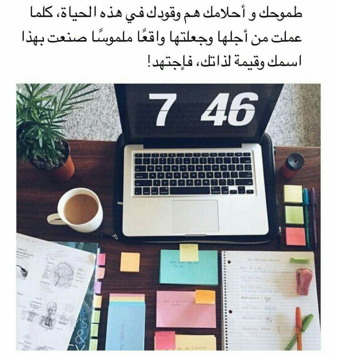 Pin By Lyna Mt On Touchy Words Funny Study Quotes Study Quotes Arabic Quotes