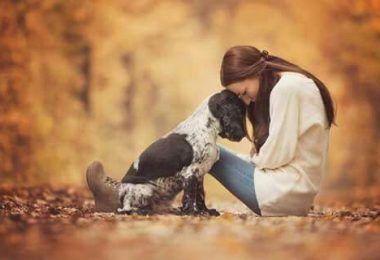 6 WEGE, IHRE HUNDELIEBE ZU ZEIGEN, DIE SIE VERSTEHEN KÖNNEN - Tiere Blog #dogsphotography