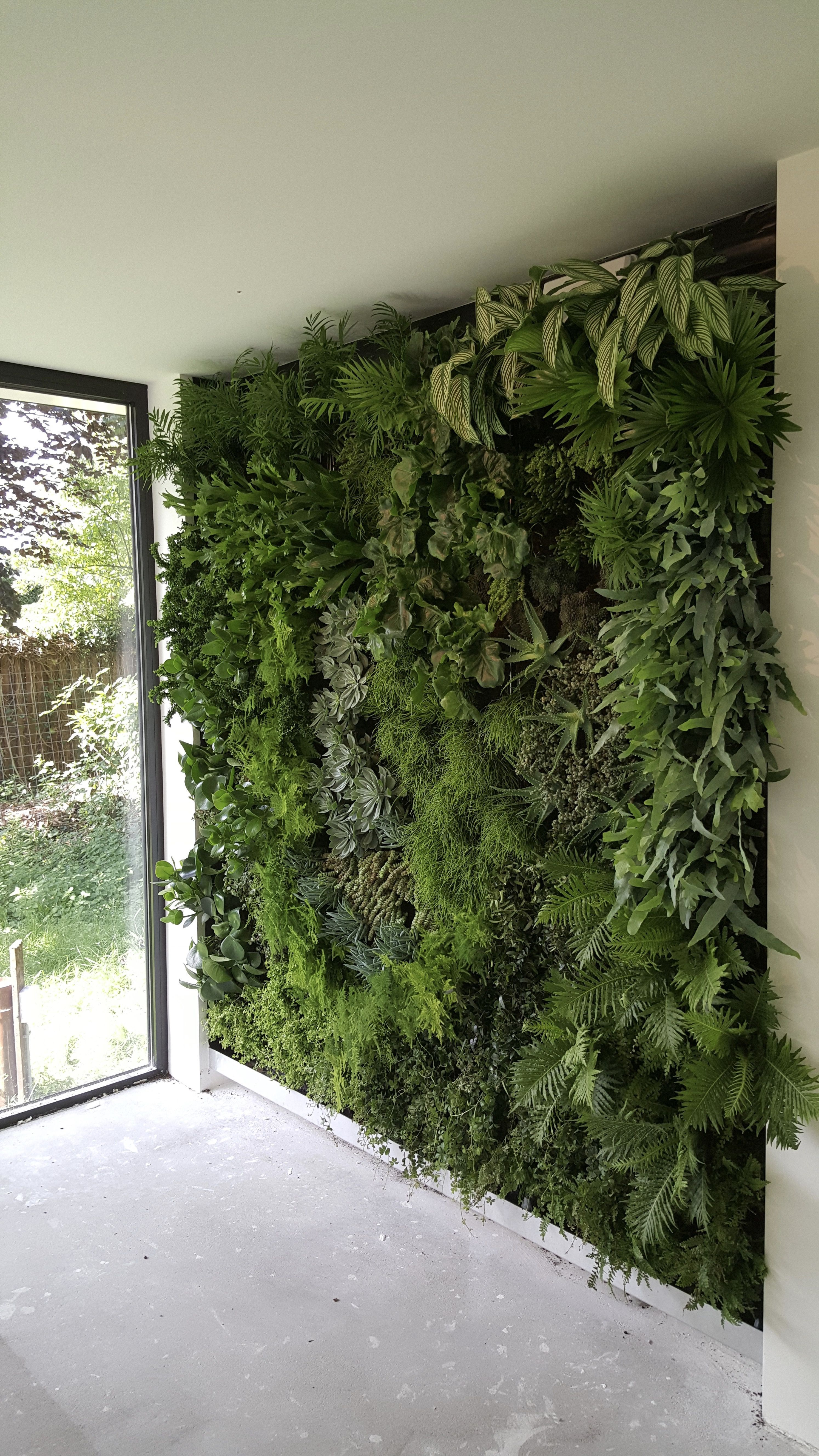 Photo of Vertical garden 🌿