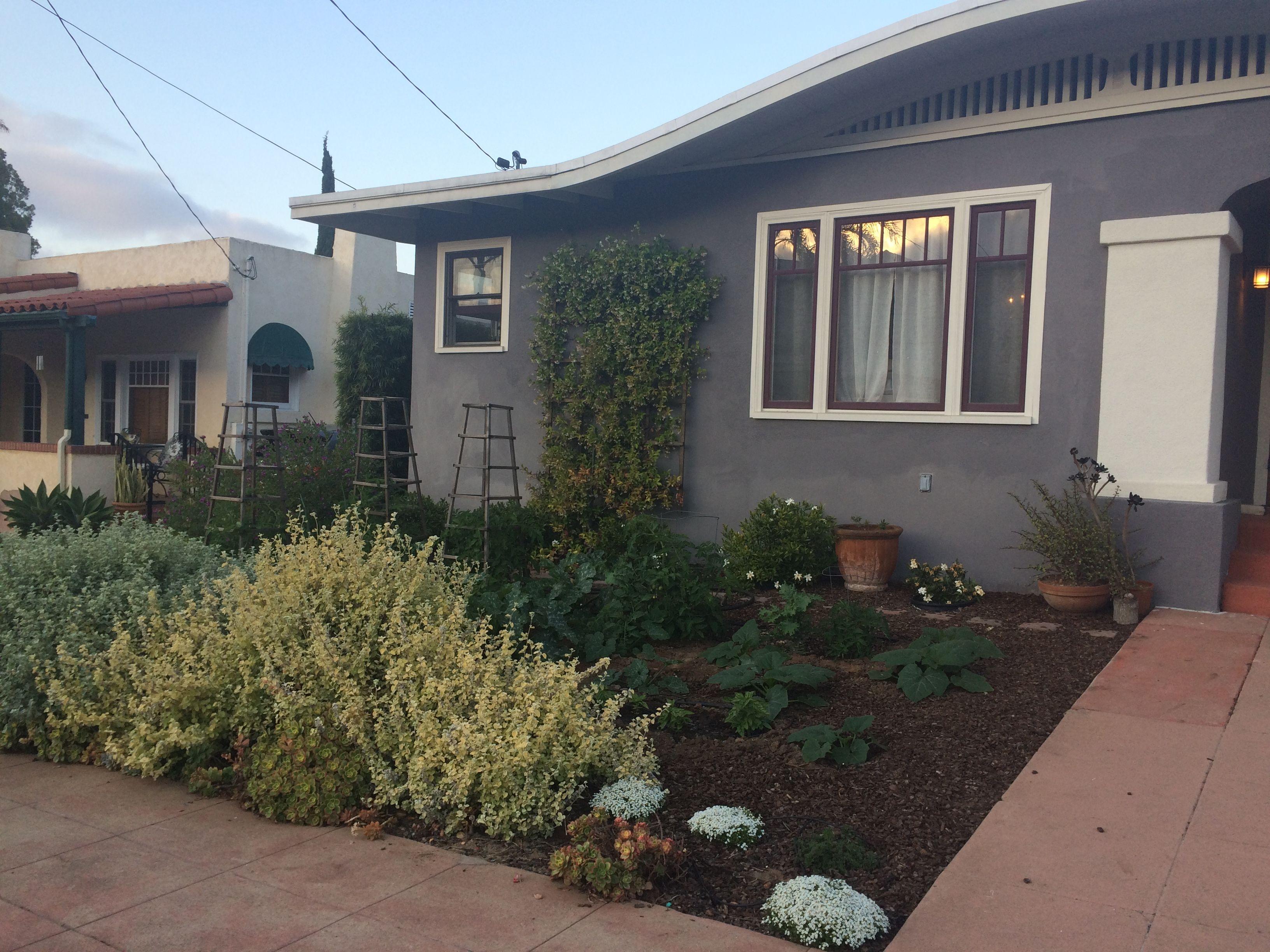 Pin by Natal D on garden | Plants, Garden