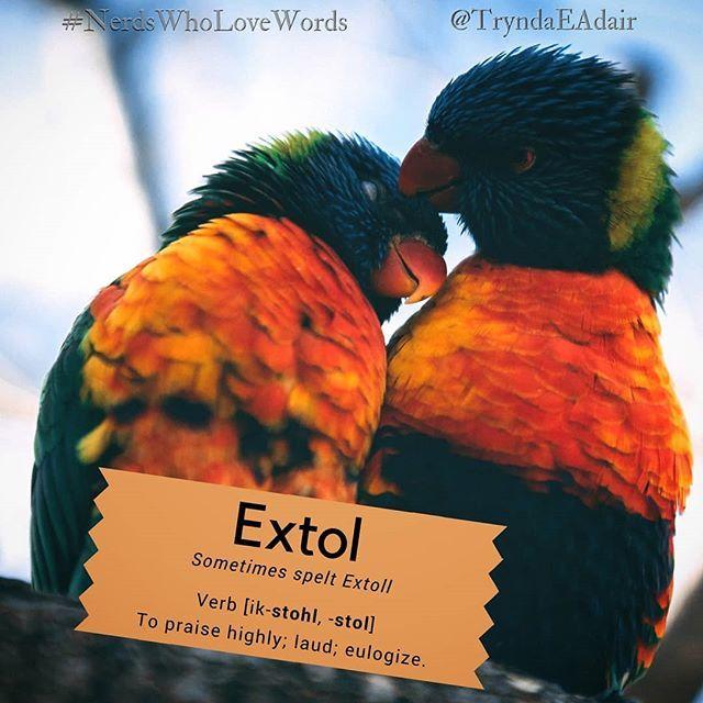#Extol   #NerdsWhoLoveWords #WordOfTheDay. Photo By #WesleyQuinn On  #Unsplash. #Verb [ik Stohl  Stol] Definition: To Praise Highly; Laud;  Eulogizeu2026