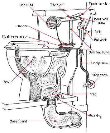 How To Fix A Toilet Hometips Plumbing Installation Diy Plumbing Toilet Repair