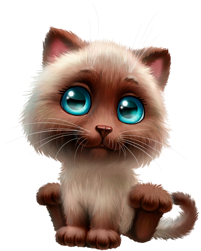 Tap the link to check out great cat products we have for your little feline friend!