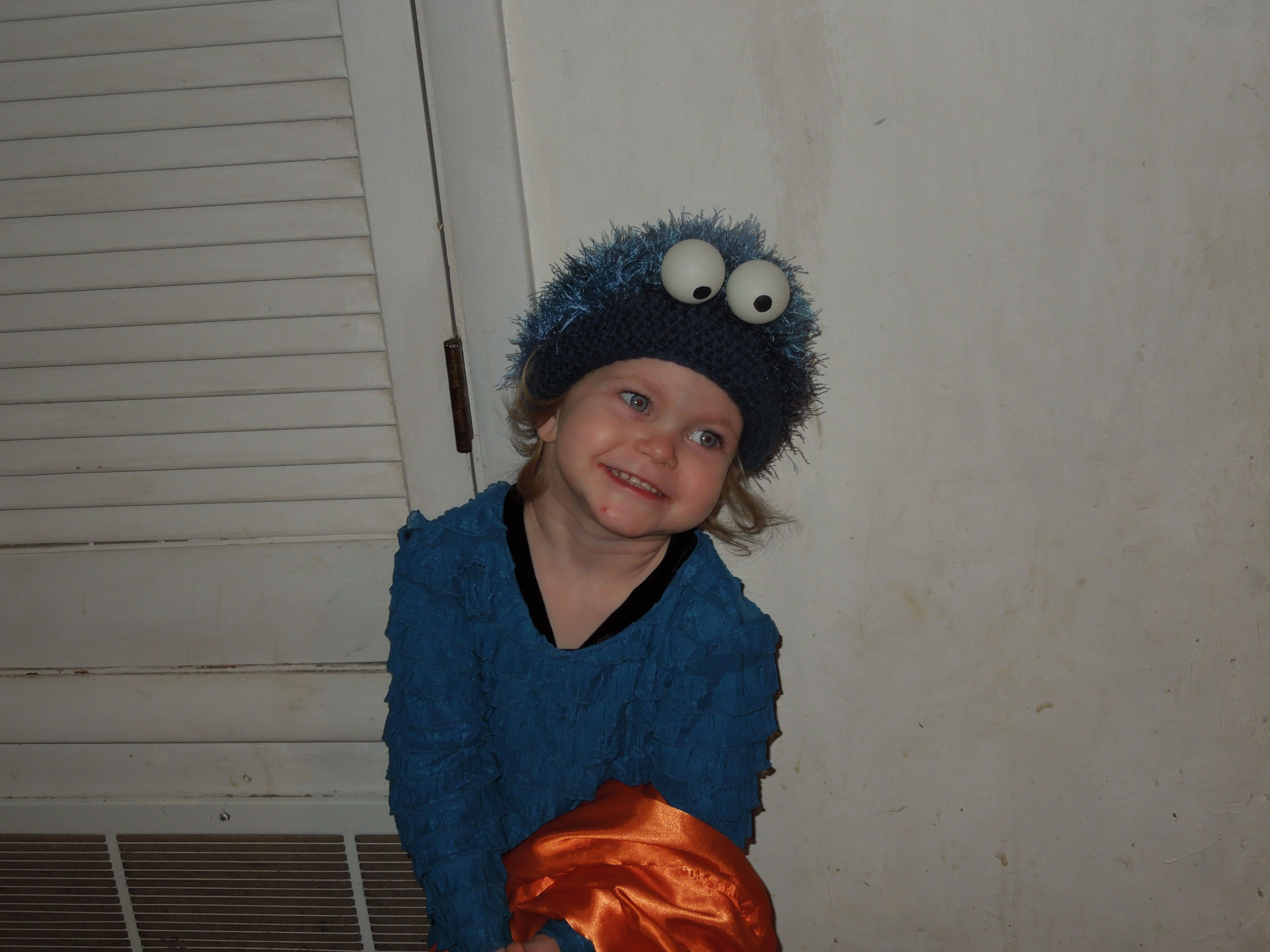 finished cookie monster costume | halloween costumes | pinterest