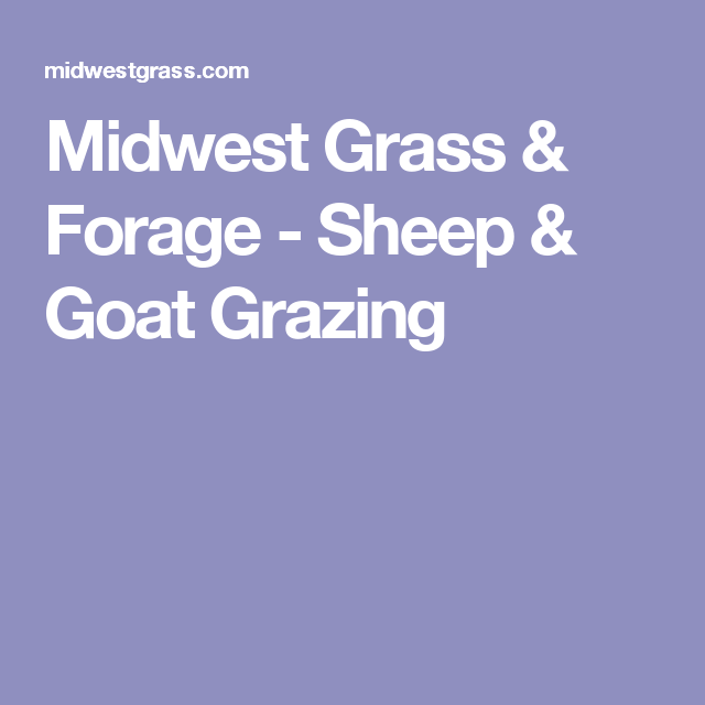 Midwest Grass & Forage - Sheep & Goat Grazing