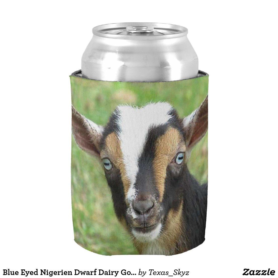 Blue eyed nigerien dwarf dairy goat can cooler zazzle