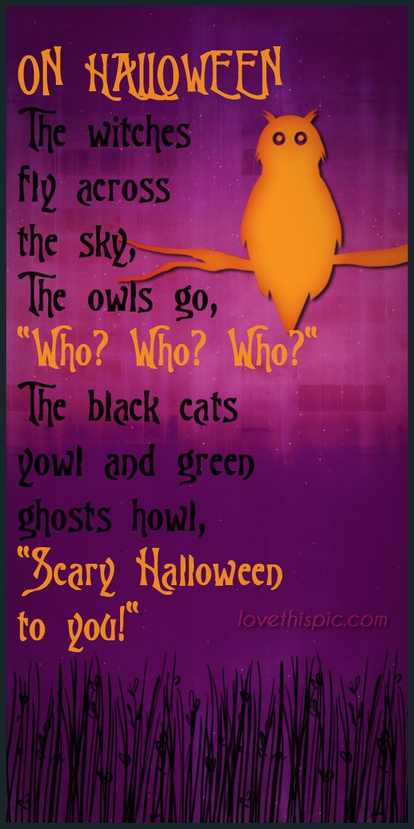 On Halloween Quotes Scary Spooky Owls Halloween Pinterest Pinterest Quotes  Halloween Quotes Boo Black Cats Witches