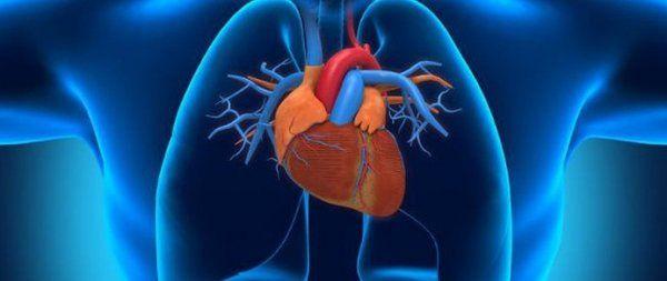 Гипертония сердца: симптомы, причины, лечение