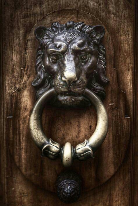 King of the Beasts Loin door knocker Geneva Switzerland. & Pin by COUNTRYMOM on :: BEAUTY AND THE BEAST :: | Pinterest | Doors