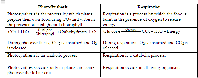 photosynthesis vs respiration Photosynthesis & respiration what is photosynthesis the process of photosynthesis is a chemical reaction it is the most important chemical reaction on our planet what do plants need for photosynthesis water carbon dioxide light chlorophyll what is the equation for the chemical reaction of photosynthesis.