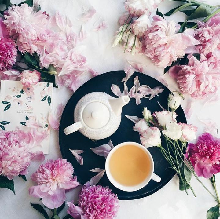 выпить бренди красивые картинки нежные пионы завтрак получается слишком сладкой