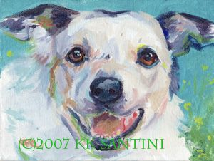 Painting a Dog a Day: 11/1/07 - 12/1/07