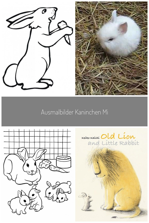 Ausmalbilder Kaninchen Mit Mohre Kaninchen Sind Susse Pelzige Kreaturen Die Man Oft In Waldern Trending Handbag Women S Summer Fashion Spring Summer Trends