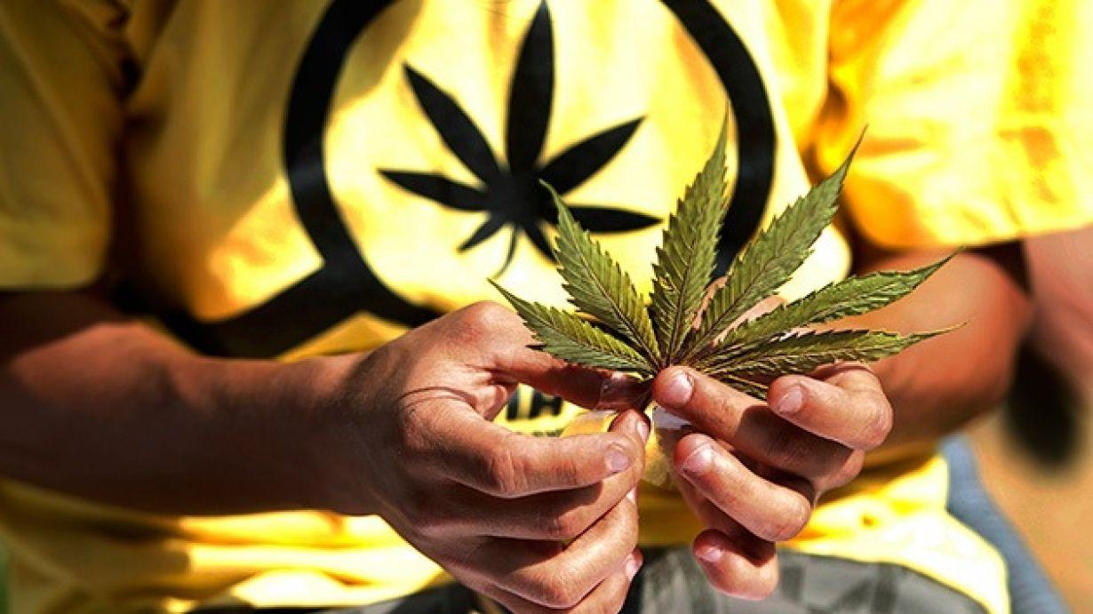 ¿Por qué es necesaria la marihuana medicinal en el Perú? El doctor Elmer Huerta hace un análisis sobre la aplicación de esta planta en el campo de la saludEl reciente allanamiento de una vivienda en el distrito limeño de San Miguel puso nuevamente en e...