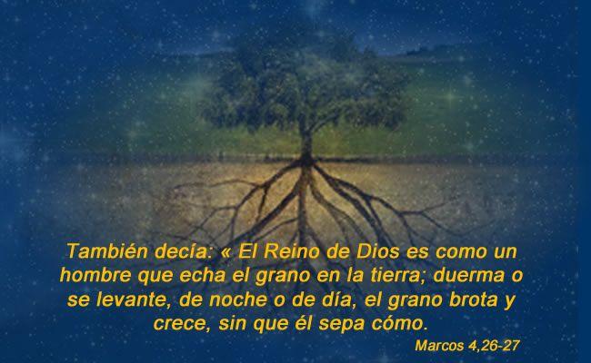 Resultado de imagen para «El Reino de Dios es como un hombre que echa el grano en la tierra; duerma o se levante, de noche o de día, el grano brota y crece, sin que él sepa cómo.