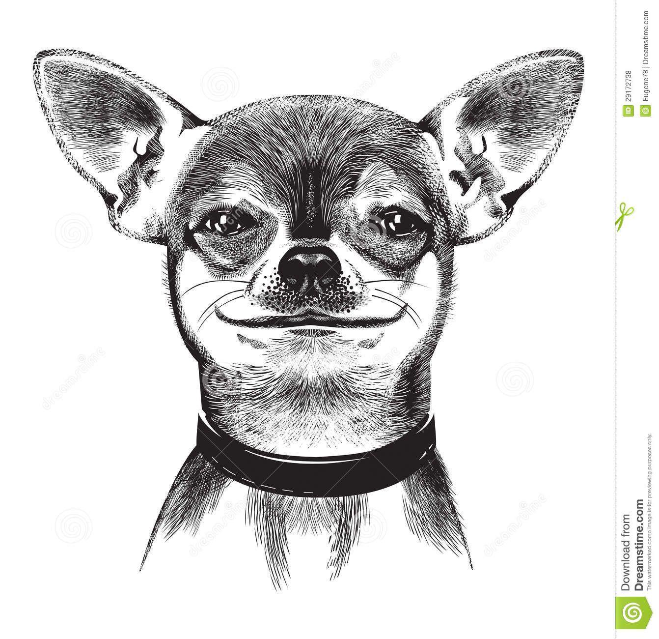 Chihuahua Dog Food Recipes