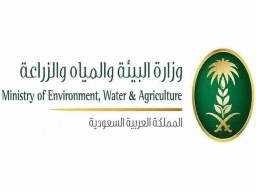 تحذير من بيع المنتجات العضوية دون تصريح Agriculture Environment Ministry