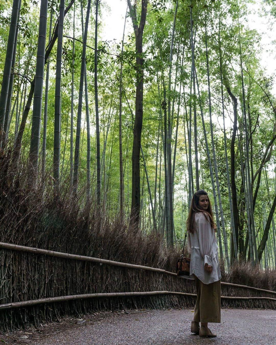Not all those who wander are lost.... #bambooforest #arashiyama #arashiyamabambooforest #japanspring #beautyisallaroun...