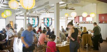Daisy Cafe & Cupcakery - Madison Originals | Daisy cafe. Vegetable enchiladas. Cool cafe
