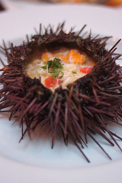 Sea urchin with dungeness crab and lemon buerre blanc, Anchor & Hope, San Francisco, CA