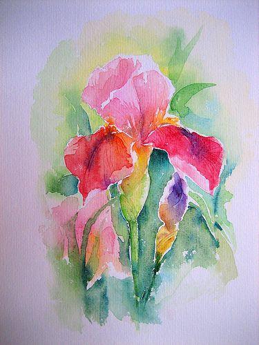Img 3709 In 2020 Floral Watercolor Iris Painting Flower Art