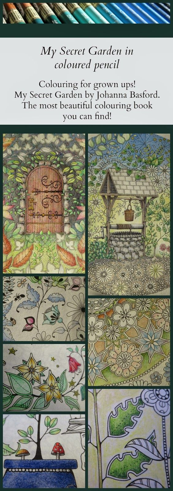 The secret garden coloring book finished - Passion For Pencils My Secret Garden Colouring Book Part 3