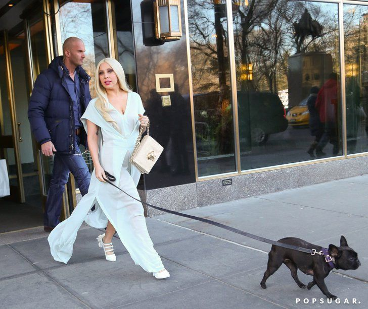 The Weekend S Must See Snaps Lady Gaga Girl And Dog Lady Gaga
