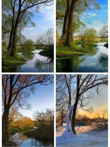 Four Seasons Photographic Print Jarek78 Art Com In 2021 Seasons Posters Four Seasons Seasons