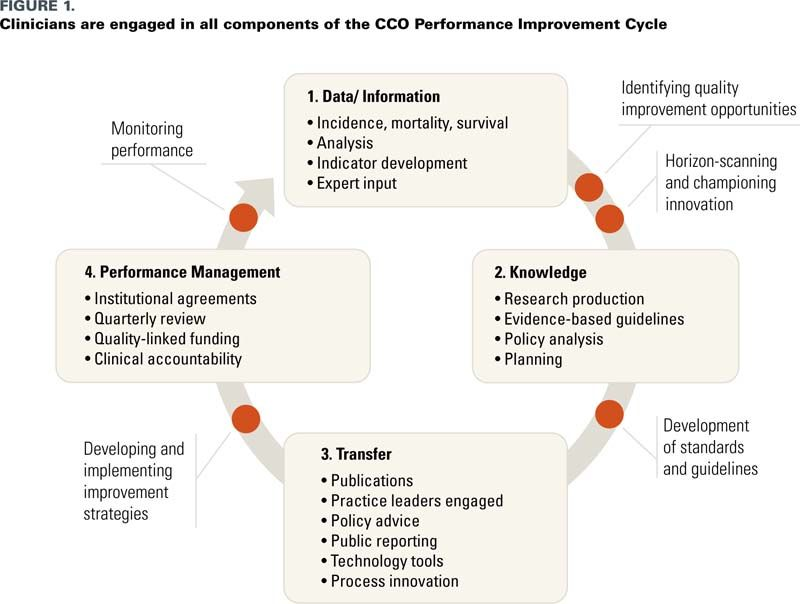The Crucial Role of Clinician Engagement in System-Wide Quality - example of performance improvement plan