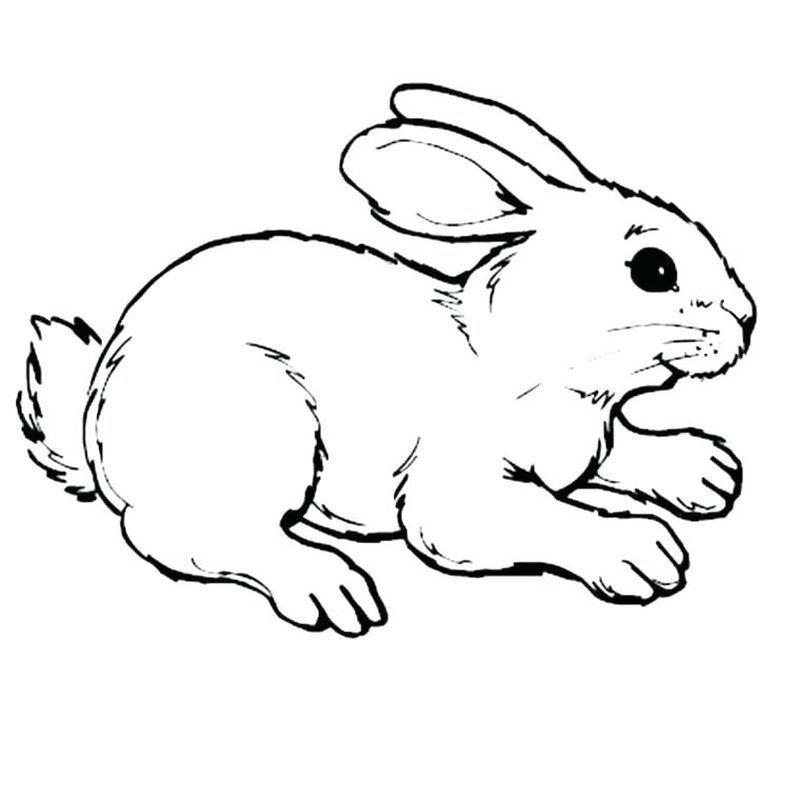 Malvorlagen von Minecraft Bunny Rabbit Bunny coloring