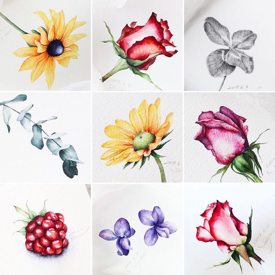 Pin By Shiro Kuriyama On Arts Watercolor Paintings Floral
