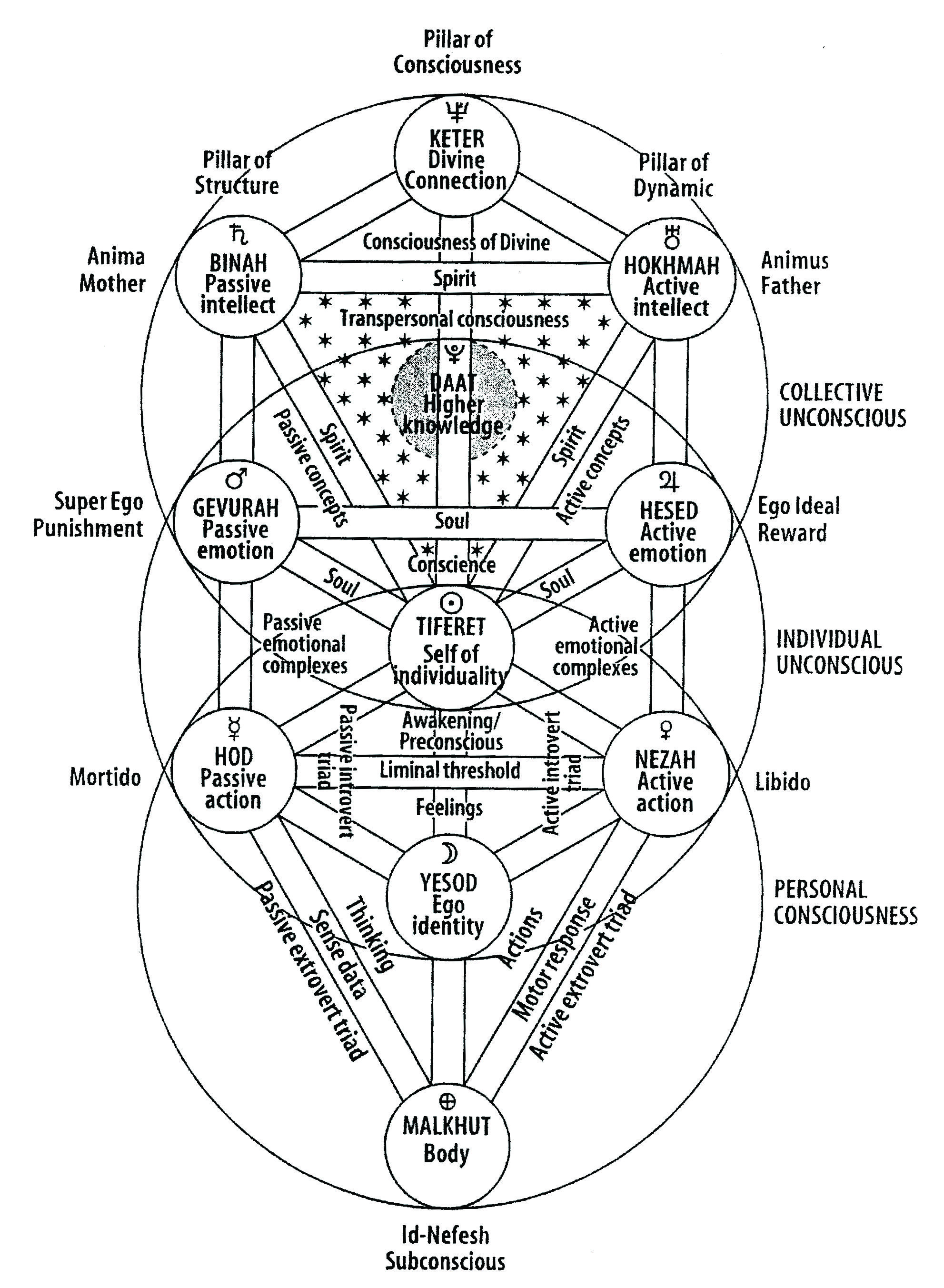 hight resolution of kabbalah tree of life google search