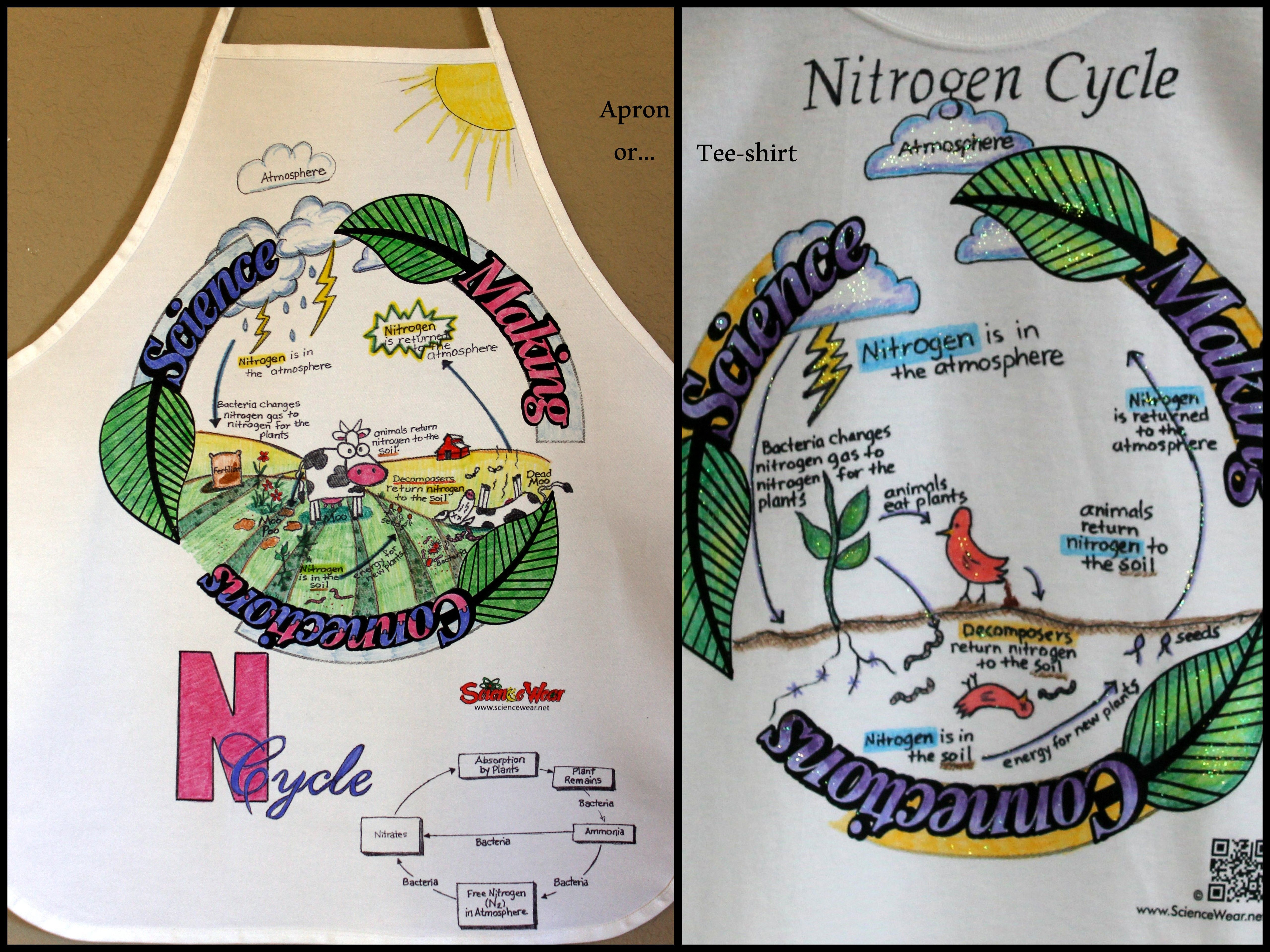 nitrogen cycle project students will love fun way to assess student understanding of the material  [ 5120 x 3840 Pixel ]