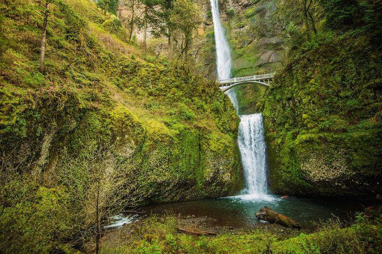 La Gorge Du Columbia Et Ses Chutes D Eau Chute D Eau Endroits A Visiter Oregon