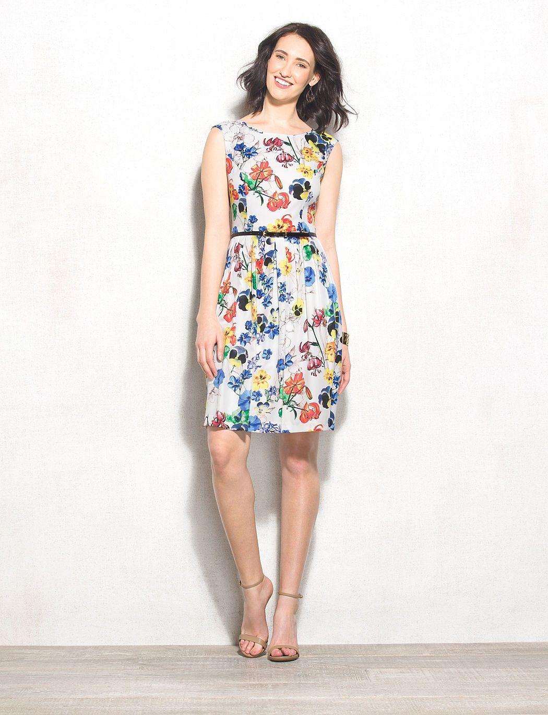 m dressbarn com cute outfits dresses, belted dress, dress barn