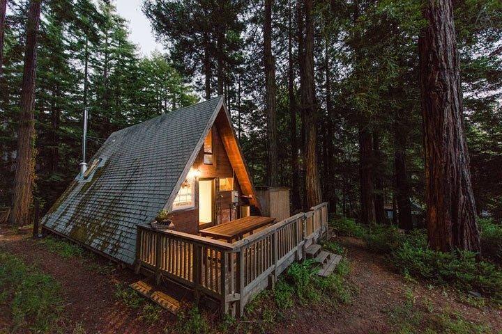 этот маленький домик похож на крышу посреди леса но не